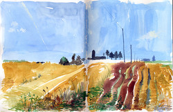 havested field Iowa Lamont