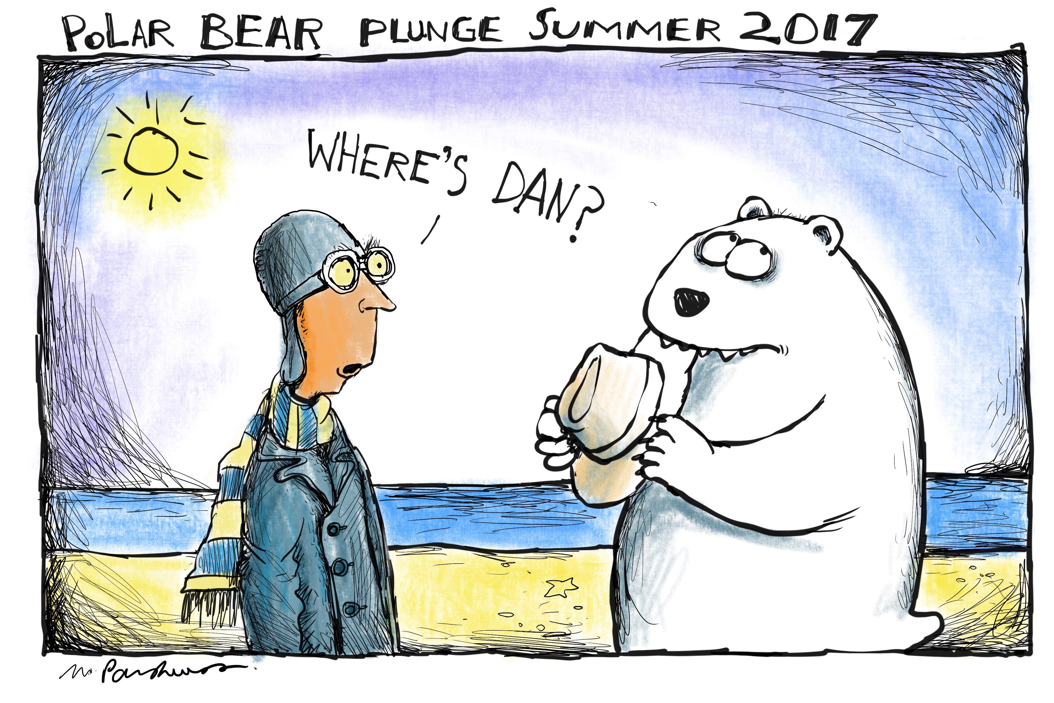 Polar_plunge_2017