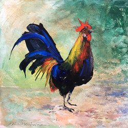 rooster again