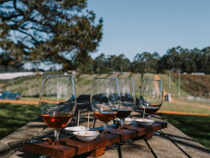 3. Pinot Picnic 2021 @Mountford Wines _C