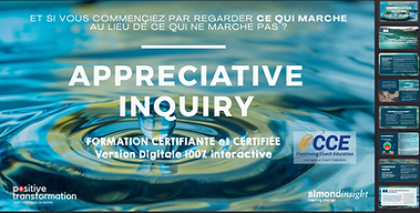 formation-appreciative-inquiry.png