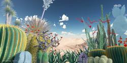 Cactus03Web.jpg