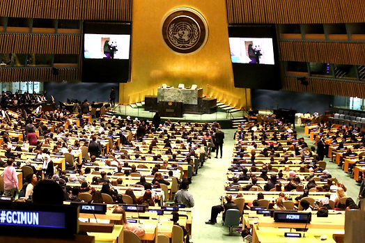 united-nations-assembly-2021_edited.jpg