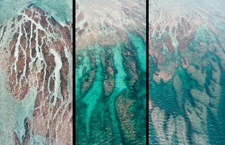 Oceanography transparent.png
