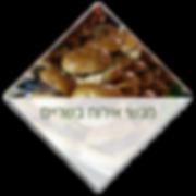 קייטרינג מגשי אירוח בשריים בסגנונות שונים