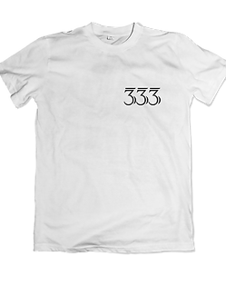 Angel 333
