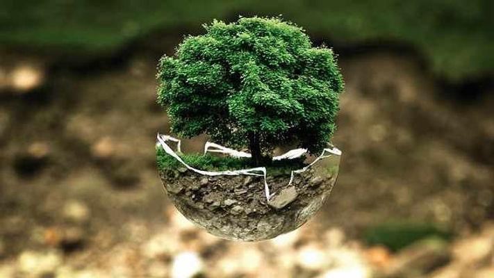assessoria-legislacao-ambiental-07.jpg