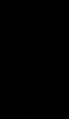 Magna Feat Logo.png