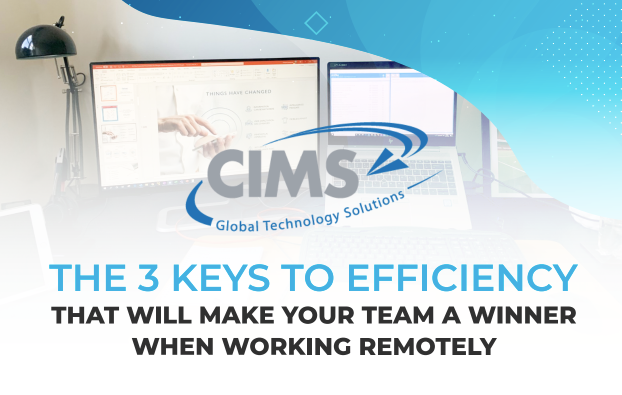 The 3 Keys to Efficiency That Will Make Your Team A Winner When Working Remotely