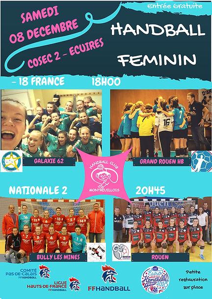 affiche journee handfeminin 08-12-18.jpg