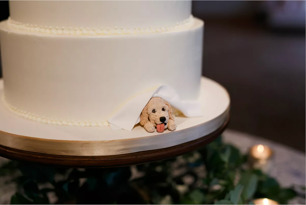 Wedding Cake, Dog Wedding Cake Topper, Wedding Cake Decor, Pet at Wedding, Jenny Demarco Photography