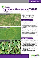 Squadron Weatherace Brochure Thumb.jpg
