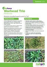 warhead trio brochure thumb.jpg