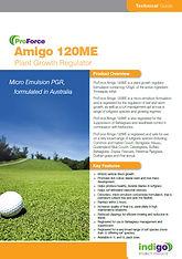 Amigo Brochure Thumb.jpg