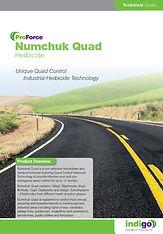 ProForce Numchuk Quad Brochure T.jpg