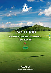 evolution brochure thumb.jpg