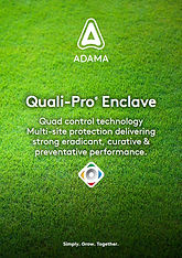 Adama Quali-Pro Enclave brochureThumb.jp