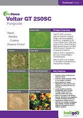 ProForce Voltar GT 250 SC Brochure T.jpg