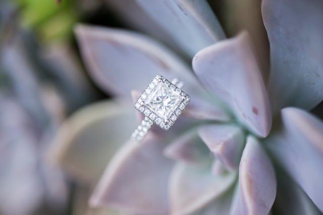 engagement ring, succulent, diamond ring, halo ring, princess cut diamond