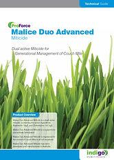 Malice Duo Brochure T.jpg