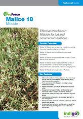 ProFroce Malice 18 Brochure T.jpg