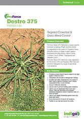 Indigo Destro Brochure T.jpg