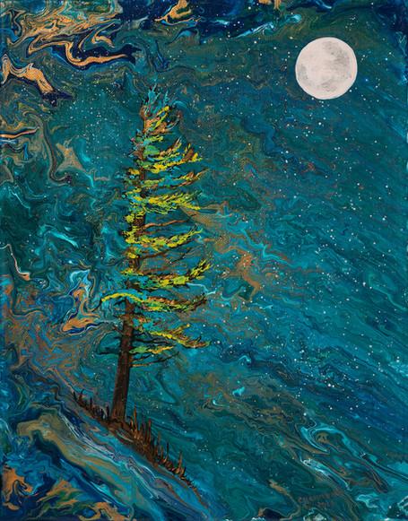 Moonshadow 11x14