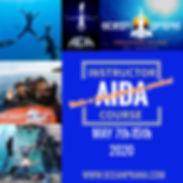 AIDA IC.jpg