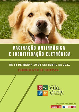 vacinação antirrábica 2021.png