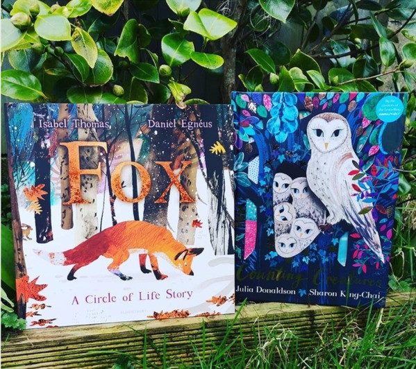 Book Match Monday Fox by Isabel Thomas and Daniel Egnéus (Bloomsbury) and Counting Creatures by Julia Donaldson and Sharon King-Chai (Two Hoots Books)