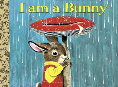 A beautiful book for little bunnies
