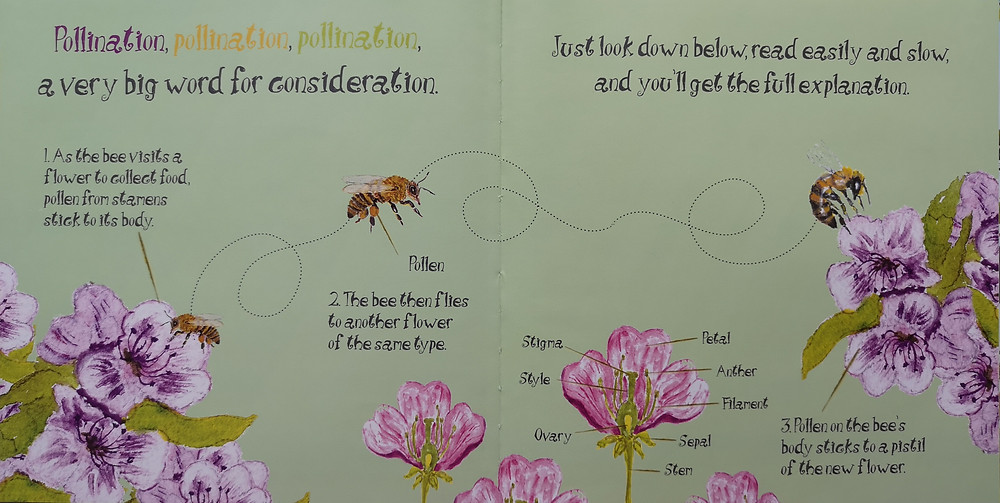 Dee the Bee by Dolores Keaveney Starfish Bay Publishing