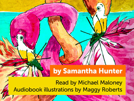 BLOG TOUR: Samantha Hunter's Flamingo Fashion, read by Michael Maloney, illustrated by Maggy Roberts