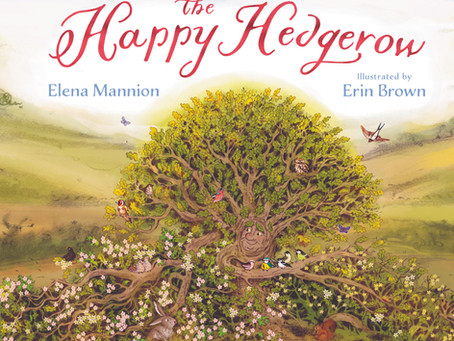 BLOG TOUR: The Happy Hedgerow by Elena Mannion & Erin Brown review + interview