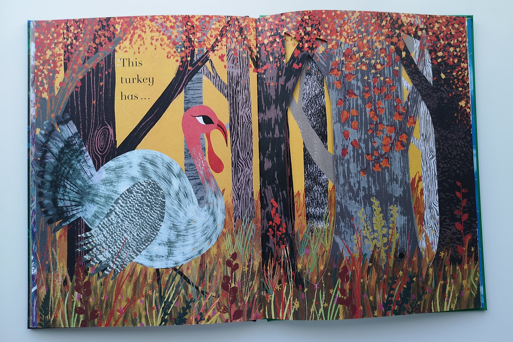 counting creatures julia donaldson sharon king-chai two hoots books