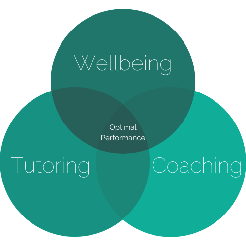 Wellbeing (2).png