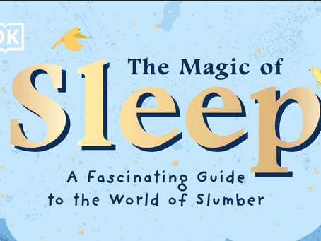 A fascinating guide to the world of slumber