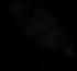 noiro tori.png