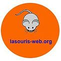 la_souris_web.jpg.original.jpg