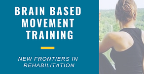 Health and Wellness Midlife Brain Based Training Brain Based Movement Training New Frontiers in Re