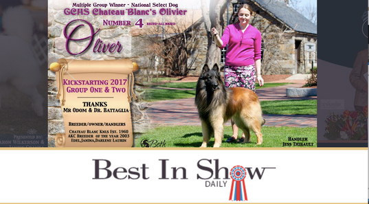 mentioned in canine journal