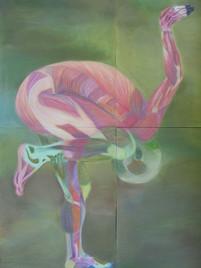 Muscular Flamingo