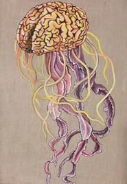 Brain Jelly