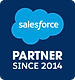 Salesforce_Partner_Badge-xs-min.png
