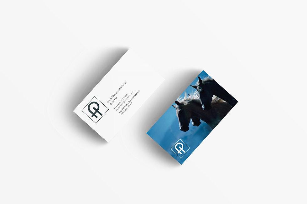 pegsus-biz_card_3000.jpg