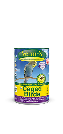 vx_caged_birds_1250.jpg