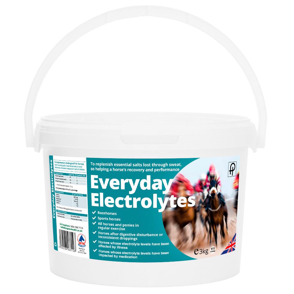 Everyday-Electrolytes-1000x1000.jpg