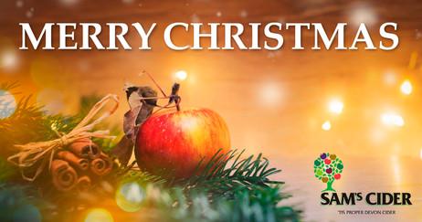 Sam's Merry Christmas FB.jpg