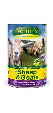 vx_sheep_1250.jpg
