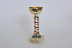 8. coppa Villa Serena 92,